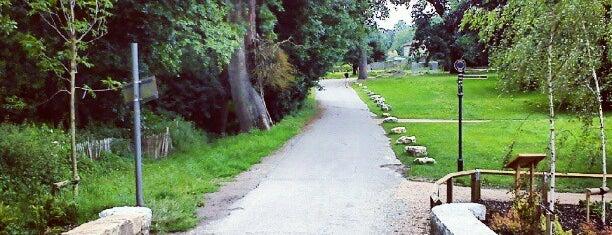 Mote Park is one of Orte, die Chris gefallen.