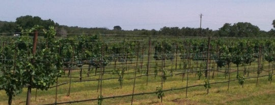 Texas Hills Vineyard is one of Things to do/go/see.