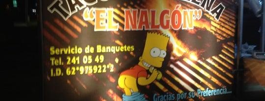 Tacos a La Leña El Nalgón is one of Danielさんのお気に入りスポット.