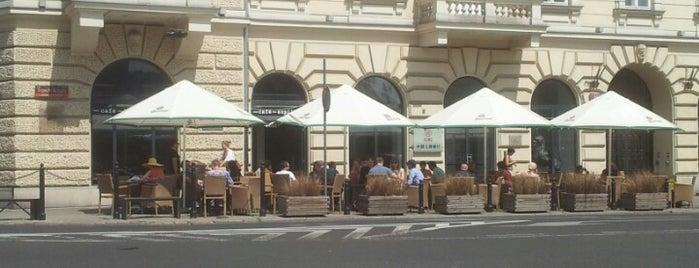 Szpilka Cafe Bar is one of faenza.