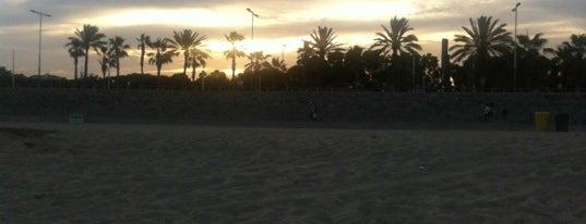 Praia de Bogatell is one of Playas de Barcelona.