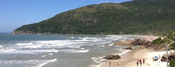 Praia do Matadeiro is one of Praias que conheço.