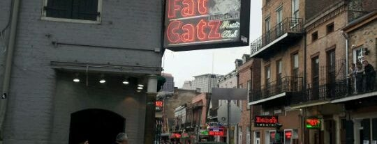 Fat Catz Music Club is one of concert venues 2 live music.