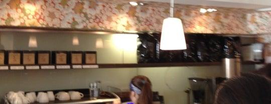 FIKA Espresso Bar is one of NYC- Coffee.