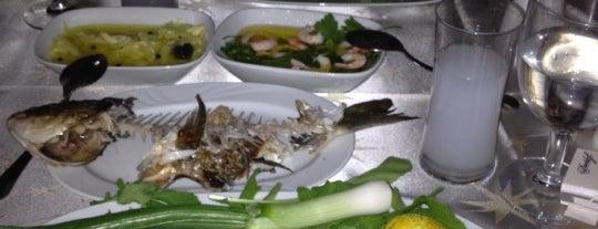 Balıkname is one of yenilesi.