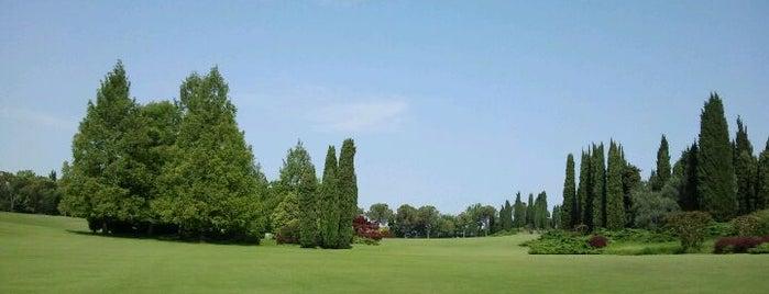 Parco Giardino Sigurtà is one of Luoghi del Garda.