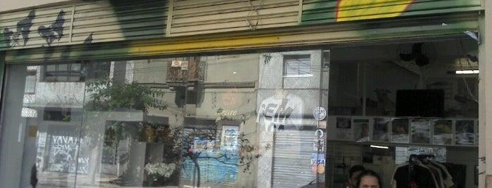 Centro de Adoção de Animais is one of Lugares favoritos de K..