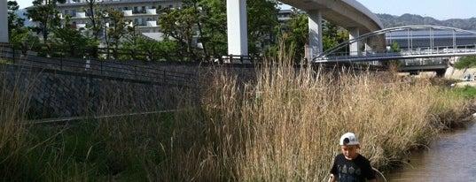 住吉川河口 is one of Kobe-Japan.