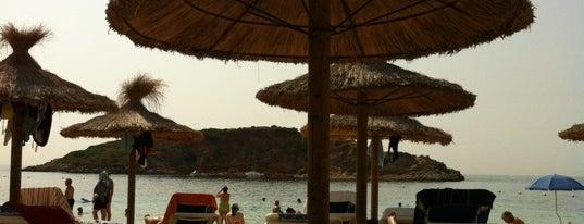 Platja de l'Oratori / Platja de Portals Nous is one of Playas de Mallorca.