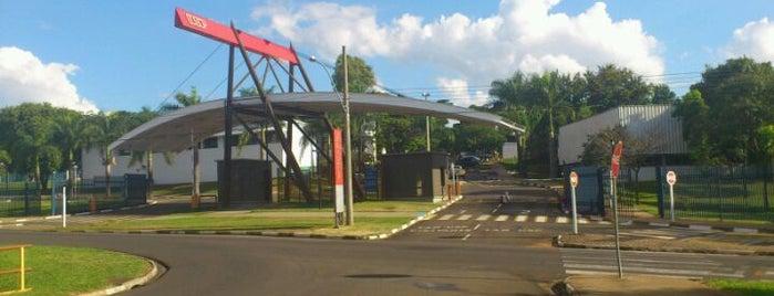 Universidade de São Paulo (USP) is one of Lugares Diversos.