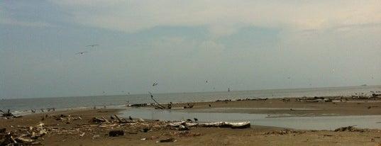 Playa Norte Anton Lizardo is one of René 님이 좋아한 장소.