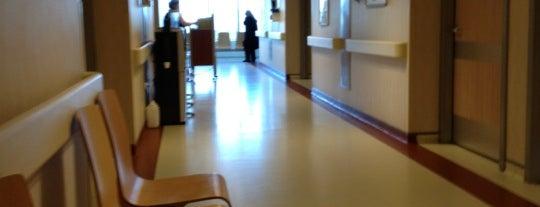 Sema Hastanesi is one of Megan : понравившиеся места.