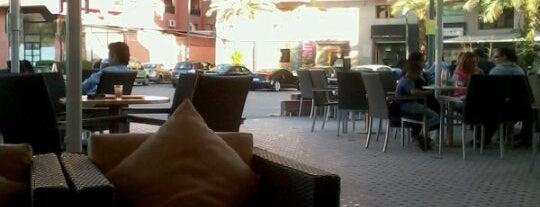 Café Lobo is one of Rock the Kasbah.