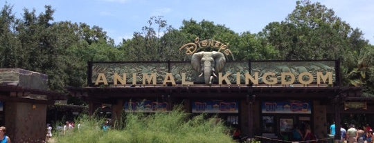 Disney's Animal Kingdom is one of Theme Parks I've Visited.