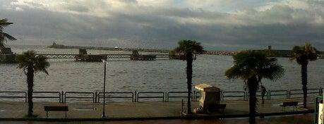 Zonguldak RoRo Limanı is one of Zonguldak.