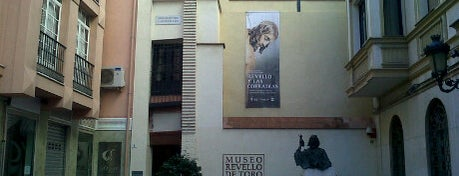 Gymkana Foursquare - Museo Félix Revelló del Toro is one of 4sqDay Malaga 2012 gymkana.