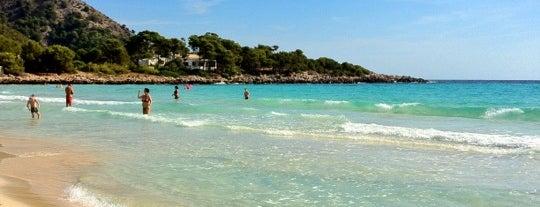 Cala Agulla is one of Mallorca.