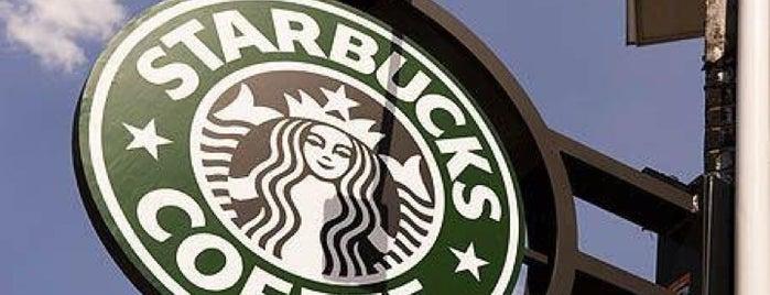 Starbucks is one of Orte, die Tarek gefallen.