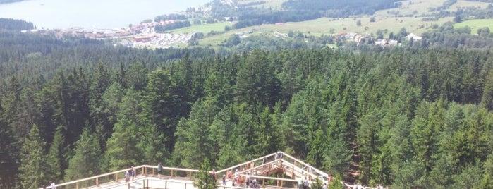 Stezka korunami stromů is one of Crazy Places.