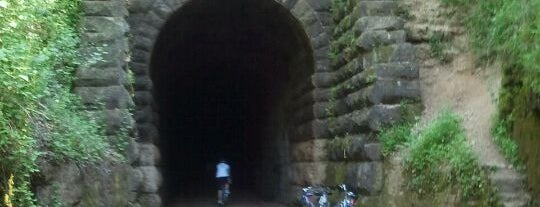 Stewart Tunnel - Badger State Trail is one of Fall 2021 to Do.