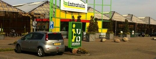 Intratuin is one of Lugares favoritos de Petri.