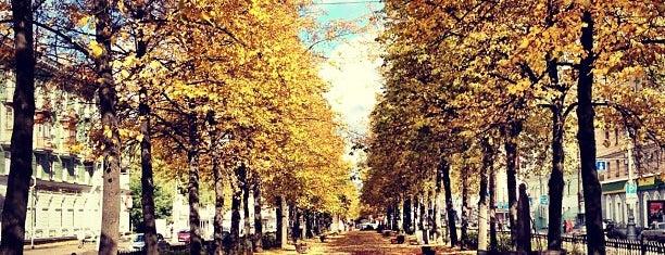 Аллея на Комсомольском проспекте is one of Lugares guardados de Анастасия.