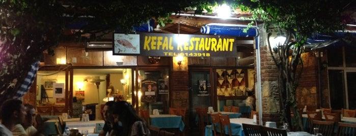 Kefal is one of Food.