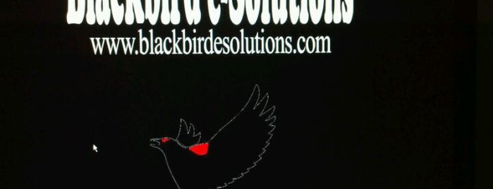 Blackbird e-Solutions is one of Lieux qui ont plu à Bryan.