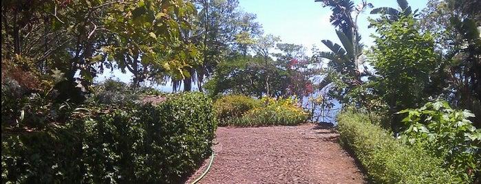 Jardim Botânico is one of Madeira.