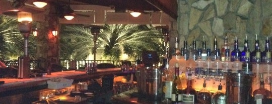 Blue Martini is one of Places Tony Stark would hang out in Central FL.