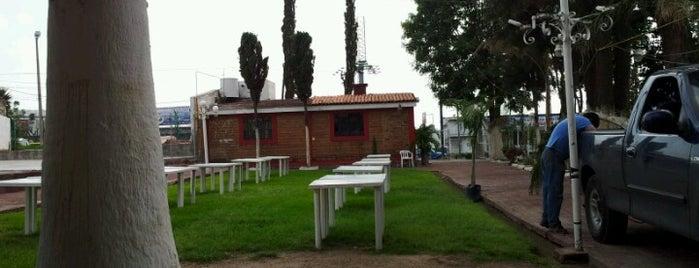 Los Pinos is one of สถานที่ที่ Anaa Christina ถูกใจ.