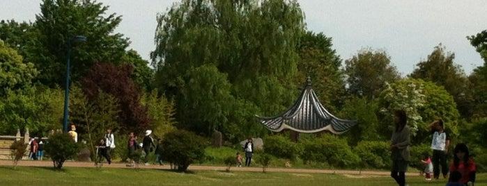 いせさき市民のもり公園 is one of Masahiro 님이 좋아한 장소.