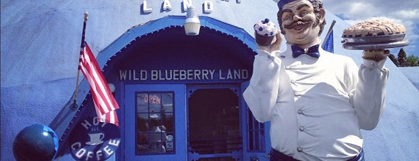 Wild Blueberry Land is one of Maine Trip To Do.