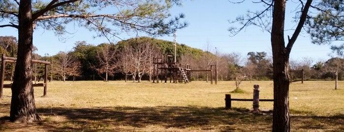 Colonia Parque Ferrando is one of สถานที่ที่ Laís ถูกใจ.