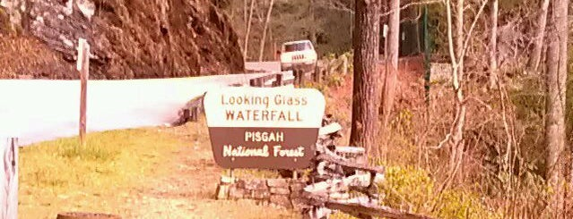 Pisgah National Forest is one of Asheville.