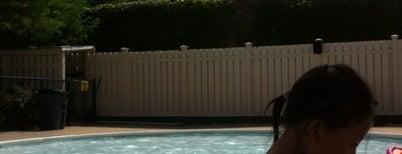 Baybridge Pool is one of NYC's to-do list.