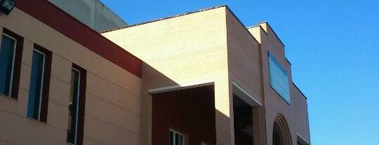PDM Lucena is one of Actividades de Ocio en Lucena.