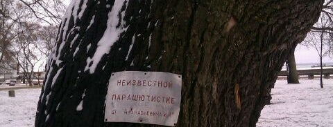 Петровский парк is one of Кронштадт.