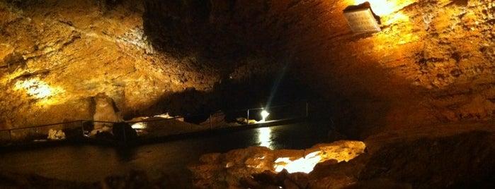 Koněpruské jeskyně is one of Výlet Berounsko.