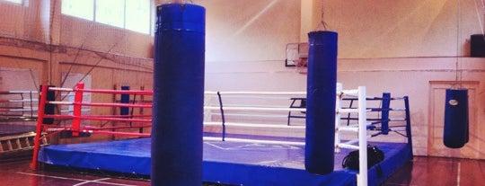 Школа бокса Николая Валуева is one of Locais curtidos por Тимур.