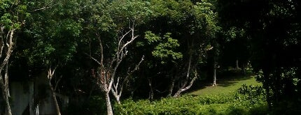 Lunuganga Estate is one of Orte, die Gordon gefallen.