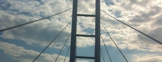 Rügenbrücke is one of Stralsund🇩🇪.
