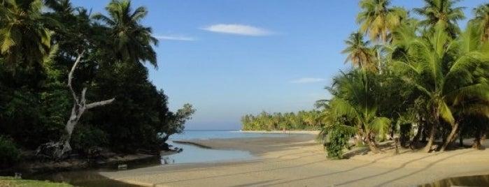 Playa Las Ballenas is one of Loredana's Liked Places.
