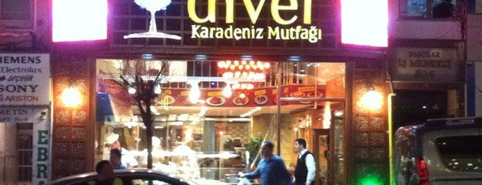 Diver Karadeniz Mutfağı is one of BORDO MAVİ MEKANLAR.
