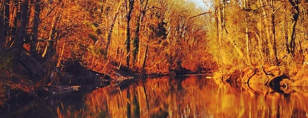 Wissahickon Valley; Fairmount Park is one of Philly Parks.