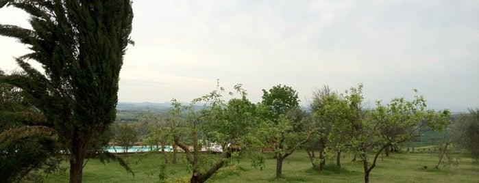 Fattoria Argiano in Chianti is one of Chianti Classico Producers.