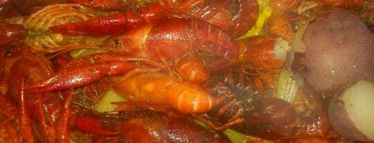 ILiveInDallas.com's Best Boiled Crawfish in Dallas