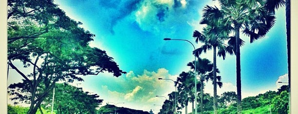 East Coast Parkway (ECP) is one of popeo.guide.singapore.