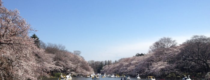 Inokashira Park is one of Tokyo's Best Great Outdoors - 2013.