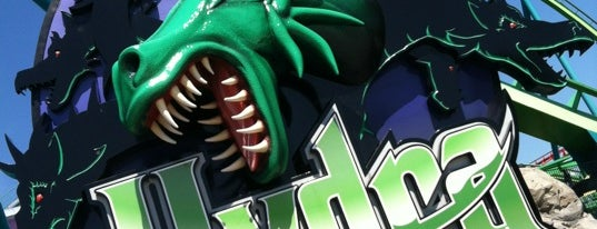 Hydra: The Revenge is one of Stevenson's Favorite Roller Coasters.